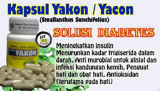 Yakon Penurun Gula Darah dan Penambah Insulin