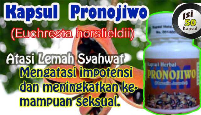 kapsul pronojiwo