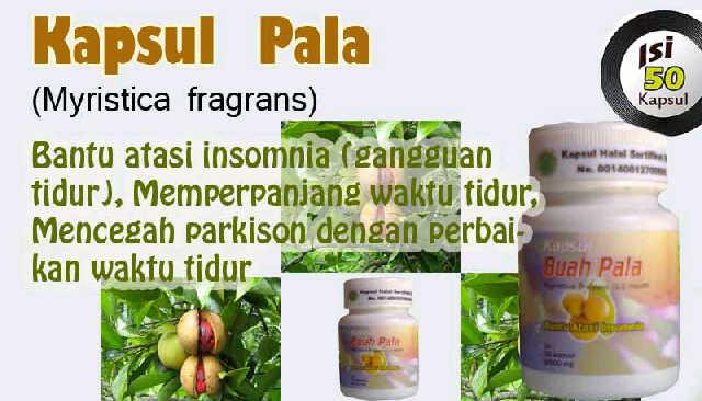 kapsul buah pala