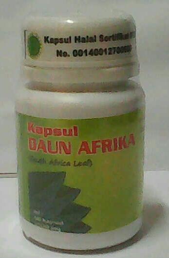 kapsul daun afrika