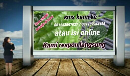 IMG_20150316_102550