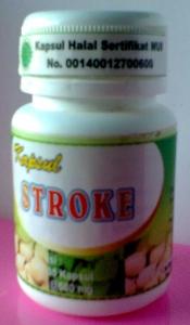 kapsul stroke